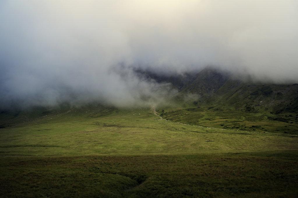 Les Alpes et la brume