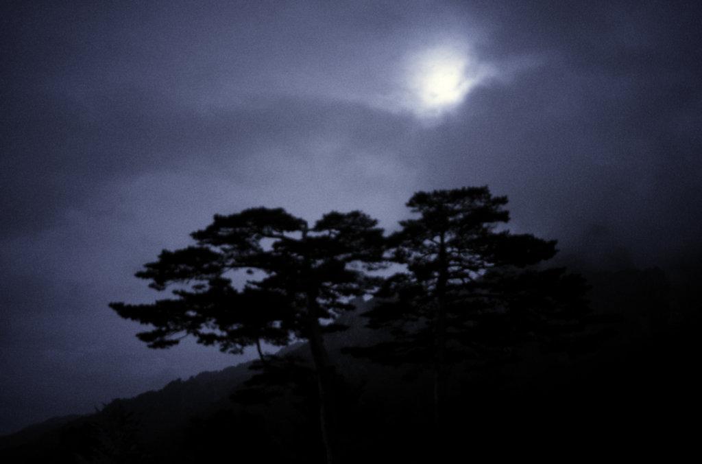 Une nuit au parc du Seoraksan